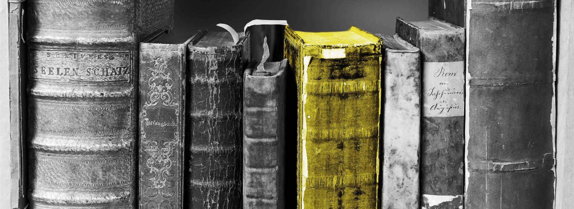 Symbolbild Bücherregal Pixabay blende12